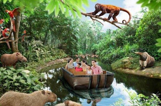 Billet d'entrée au safari sur la...