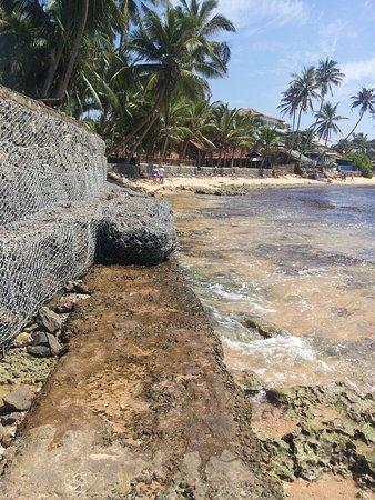 Polina Resort (Hikkaduwa, Sri Lanka) - Fritidshus - anmeldelser - sammenligning af priser ...