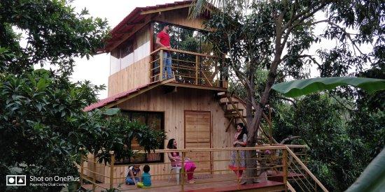 Nature Stay Palghar India Foto S Reviews En Prijsvergelijking Tripadvisor
