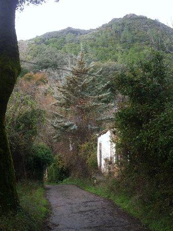 Cortegana, Spanyol: El camino llega a la casa, al fondo