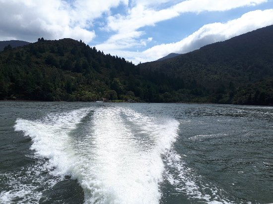 Pelorus Sound Water Taxi & Cruises 사진