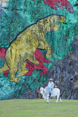 Mural de la prehistoria vinales cuba updated 2018 all for Mural de la prehistoria