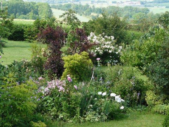 Sainte-Genevieve, Francja: jardin