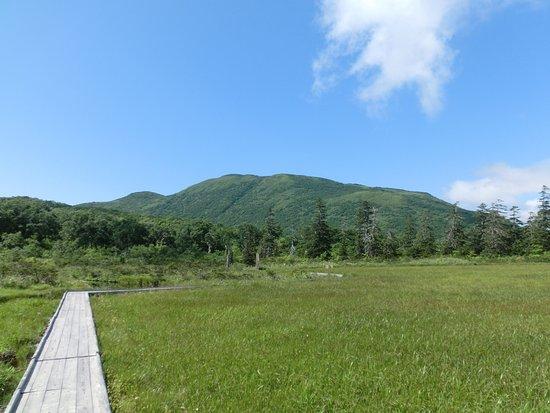 Shinsennuma: 神仙沼から帰る途中
