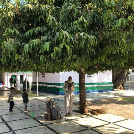 Raisen, India: photo3.jpg