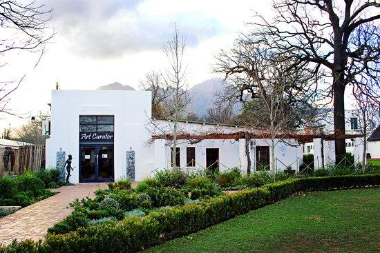 Art Curator Gallery