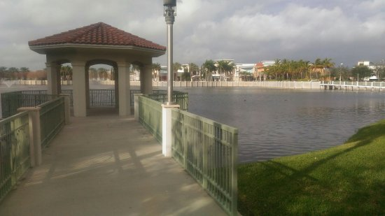 hilton garden inn palm beach gardens p_20180123_091617_largejpg - Hilton Garden Inn Palm Beach Gardens