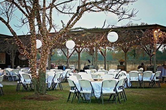Nashville, GA: Weddings