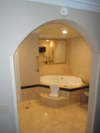 Best Western Plus Marina Shores Hotel: Spa bath