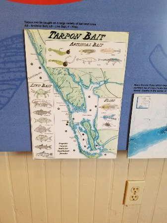 Boca Grande, FL: Inside attractions