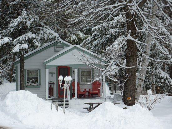 Cottage Place on Squam Lake: Winter wonderland!