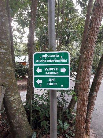 Chaiya, Thailandia: 20180123_171223_large.jpg