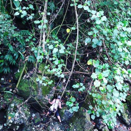 Bilde fra Nanue falls