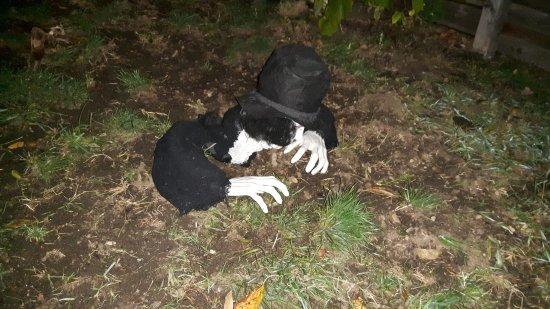 Eltendorf, Austria: Halloween Dekoration