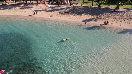 Oahu Private Tours Paradise Cove Almost All To Ourselves Great