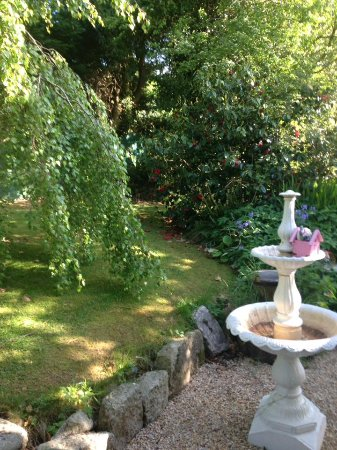 Kilbride, Irlanda: A Section of Our Beautiful Garden