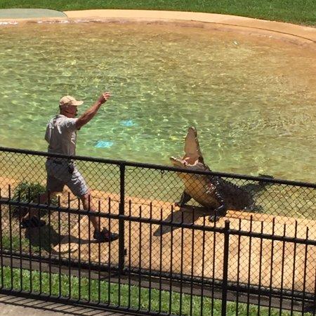 Australia Zoo : photo1.jpg