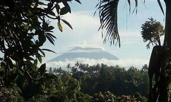 Taman Indrakila: orca-image-1513987354003_large.jpg