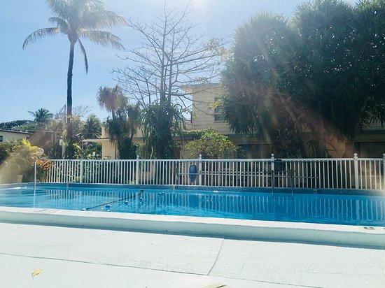 Sea Cove Motel : Belle piscine propre
