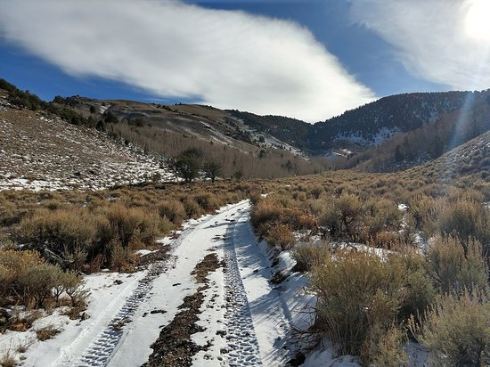 Wild Horse Safaris : Hike up the canyon.