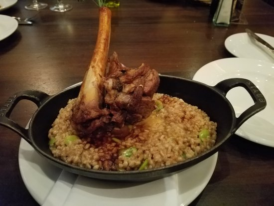 City Cellar Wine Bar & Grill : Colorado lamb shank (extra $7 added)! Tasty !