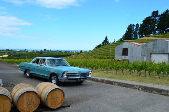 Napier, Nuova Zelanda: Arriving at Esk Valley Estate Cellar door