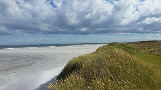 Mount Pleasant, Falkland Islands: El Caribe?...