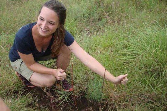 Lombok Hijau Tours: A guest planted a tree as a part of our conversation program.