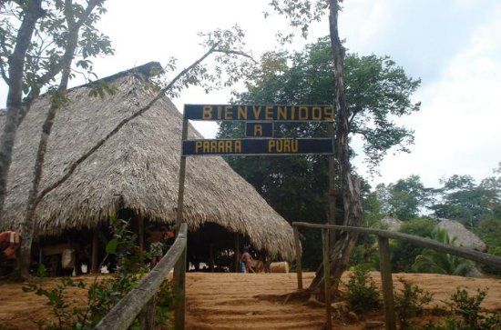 Embera Village and Jungle Tour from Panama City