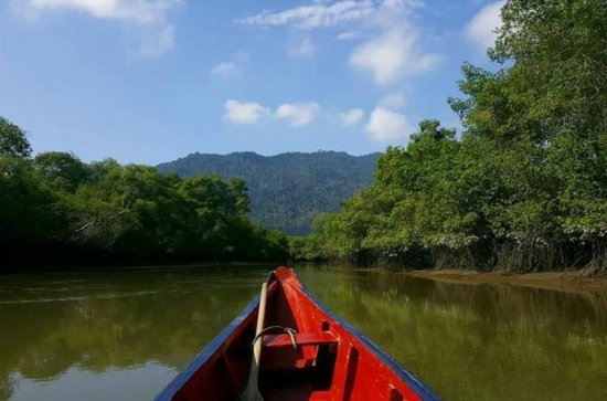 Reserva Ecológica Manglar de Churute...