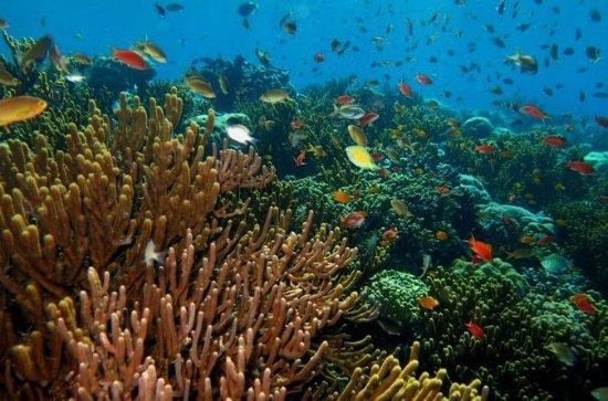 Pacchetti di sport acquatici di Bali