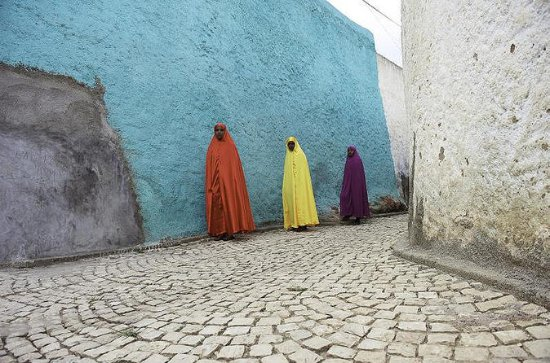Harar via Awash National Park Private...