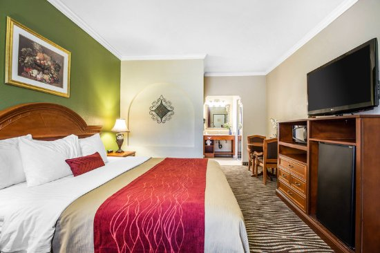 Laguna Hills, كاليفورنيا: Guest room