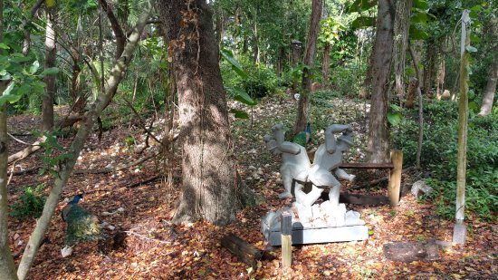 1d9f26069b71f Discover Florida Tours  A sculpture titled