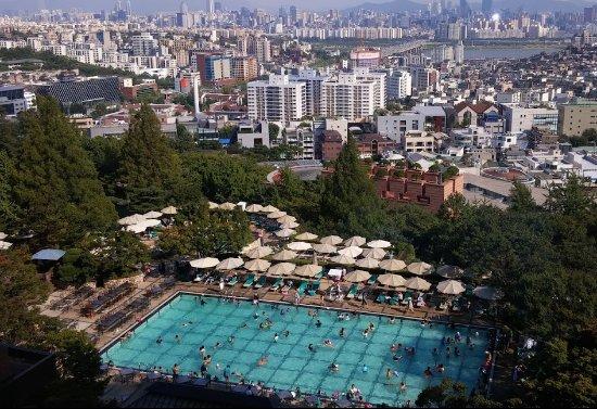 Grand Hyatt Seoul: 객실에 본 풀장
