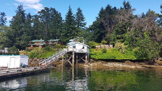 Nanaimo, Canada: 20170616_154818_large.jpg