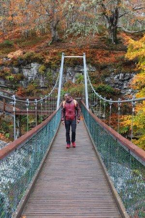 Contin, UK: Puente sobre la cascada