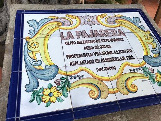 Almàssera, España: Rótulo