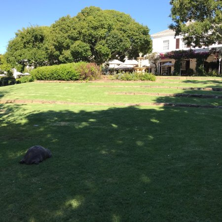Claremont, Südafrika: photo5.jpg