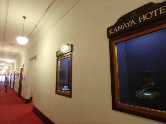 Nikko Kanaya Hotel Resmi