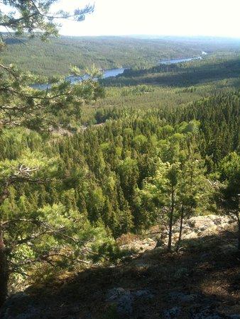 Finnskogleden