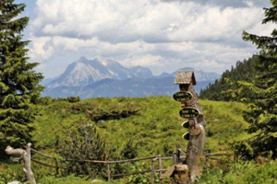 Zeltweg, Αυστρία: Gipfelziele! Das Murtal bietet Wanderwege zwischen 800 und 2.700 m Seehöhe in elf Regionen (Krak