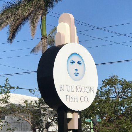 Blue moon fish company lauderdale by the sea for Blue moon fish company fort lauderdale