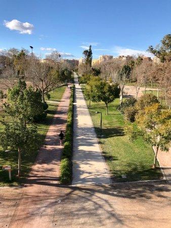 Jardines del turia bewertungen fotos valencia spanien tripadvisor - Jardin del turia valencia ...