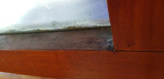 Tsitsikamma Lodge: More Dirty Window Frames