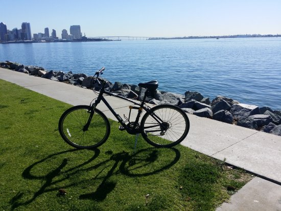 The Bike Revolution Private Tours: Bicycling on Harbor Island (San Diego)