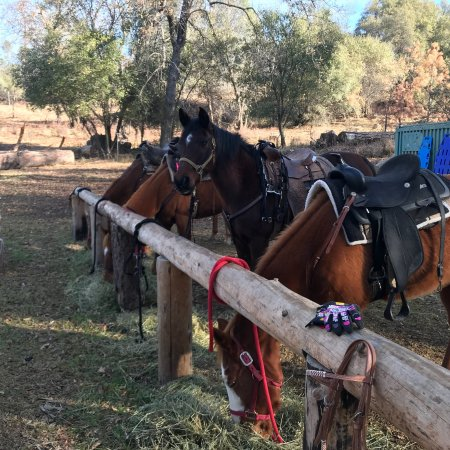 North Fork, Kalifornia: Willow Creek Riding Center