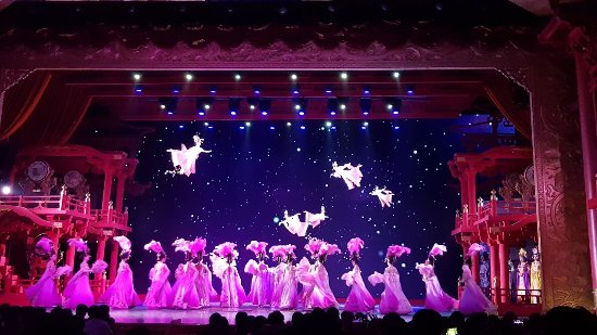 תמונה מEvening Tour: Xi'an Tang Dynasty Music and Dance Show and Dumpling Banquet