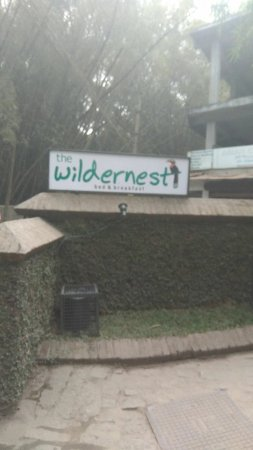 Wildernest Bed & Breakfast: IMG-20180124-WA0015_large.jpg