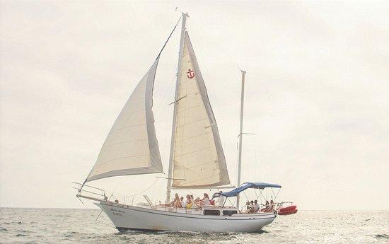 PV by Sea Tours